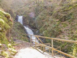 Dolgoch Falls Cottage - Mid Wales - 1000862 - thumbnail photo 19