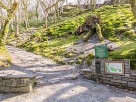 Dolgoch Falls Cottage - Mid Wales - 1000862 - thumbnail photo 21
