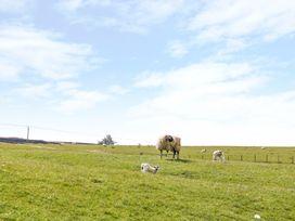 The Barn - Yorkshire Dales - 1001469 - thumbnail photo 19