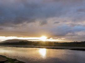 Terns - Scottish Lowlands - 1001951 - thumbnail photo 14
