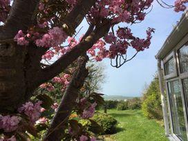 Bryn Mor - North Wales - 1002314 - thumbnail photo 13