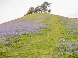 Woodlanders - Dorset - 1002833 - thumbnail photo 28