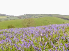 Woodlanders - Dorset - 1002833 - thumbnail photo 30