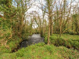 Willow - Cornwall - 1003705 - thumbnail photo 27