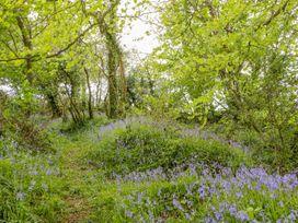 Orchard Loft - Devon - 1005265 - thumbnail photo 25