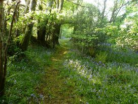 Orchard Loft - Devon - 1005265 - thumbnail photo 40