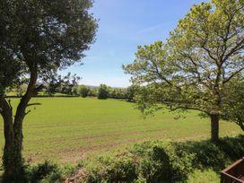 Dartmoor 2 - Cornwall - 1006955 - thumbnail photo 19