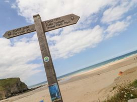 Sandy Cove - Cornwall - 1007004 - thumbnail photo 20