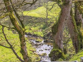 Squirrels Leap - Lake District - 1007205 - thumbnail photo 14