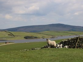 Hill Top Cottage - Yorkshire Dales - 1007845 - thumbnail photo 23