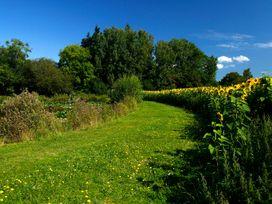 Beech Lodge - Devon - 1008070 - thumbnail photo 26