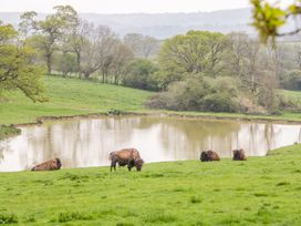Bush Farm Annexe - Dorset - 1008355 - thumbnail photo 27