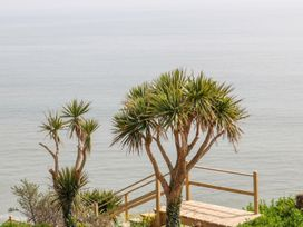 Beach House - County Wexford - 1008397 - thumbnail photo 18