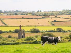 The Old Cows House - Cornwall - 1008677 - thumbnail photo 20