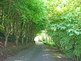 Cae'r Borth - Anglesey - 1008757 - thumbnail photo 37