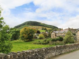Carw - North Wales - 1008767 - thumbnail photo 13