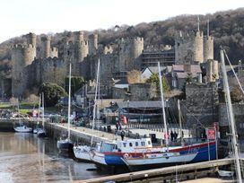 Coed y Felin - North Wales - 1008784 - thumbnail photo 24