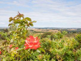 Frondeg - North Wales - 1008828 - thumbnail photo 9