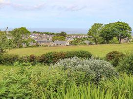 Fron Fawr - North Wales - 1008829 - thumbnail photo 33