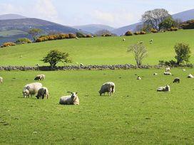Hafod Pontllyfni - North Wales - 1008863 - thumbnail photo 13