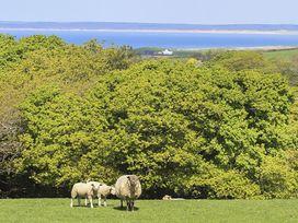 Hafod Pontllyfni - North Wales - 1008863 - thumbnail photo 14
