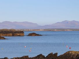 Cabbage Patch - Anglesey - 1008951 - thumbnail photo 17