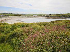 Penrallt Llanfaethlu - Anglesey - 1008957 - thumbnail photo 20