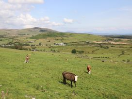 Pen y Groes - North Wales - 1008969 - thumbnail photo 23