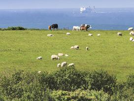Rhyd Angharad Barns - Anglesey - 1008994 - thumbnail photo 17