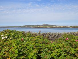 Ty Bychan - Anglesey - 1009073 - thumbnail photo 1