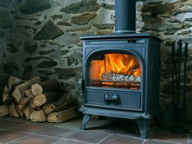 Tyn y Mynydd - Anglesey - 1009093 - thumbnail photo 3