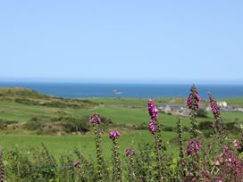 West Mouse View - Anglesey - 1009114 - thumbnail photo 22