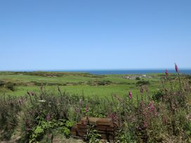 West Mouse View - Anglesey - 1009114 - thumbnail photo 24