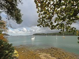 Ynys Castell - Anglesey - 1009123 - thumbnail photo 26