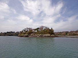 Ynys Castell - Anglesey - 1009123 - thumbnail photo 27