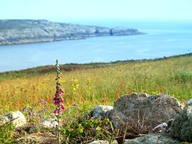 Ysbryd y Mynydd - Anglesey - 1009124 - thumbnail photo 24