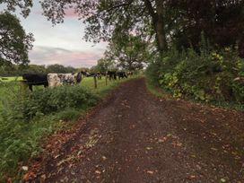 Hatton's Lodge - Somerset & Wiltshire - 1010074 - thumbnail photo 27