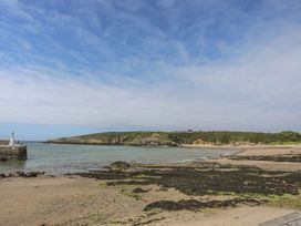 Grisiau'r Afon - Anglesey - 1010980 - thumbnail photo 28