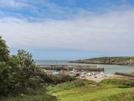 Grisiau'r Afon - Anglesey - 1010980 - thumbnail photo 25