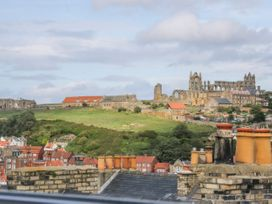 Salty Fox - Whitby & North Yorkshire - 1011163 - thumbnail photo 25