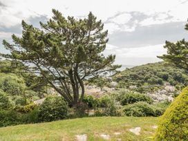 Spyglass - Cornwall - 1012757 - thumbnail photo 17