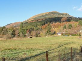 Carnmore - Scottish Highlands - 1013052 - thumbnail photo 36
