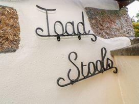Toadstools - Cornwall - 1013212 - thumbnail photo 4