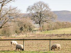 Criftin Farm House - Shropshire - 1013261 - thumbnail photo 37