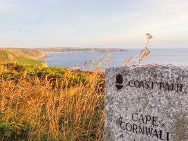 See Two Seas, Cape Cornwall - Cornwall - 1013628 - thumbnail photo 54