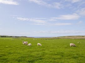 1 Thurdistoft Farm Cottage - Scottish Highlands - 1013672 - thumbnail photo 25