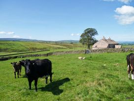 Higher Croasdale Farmhouse - Lake District - 1013729 - thumbnail photo 11