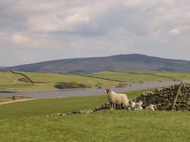 Rosie's Cottage - Yorkshire Dales - 1014106 - thumbnail photo 12