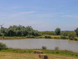 Kingfisher - Lincolnshire - 1014516 - thumbnail photo 21