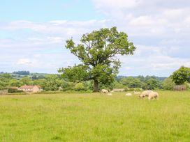 Turnip House - Yorkshire Dales - 1014653 - thumbnail photo 22